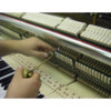 Sudhira Hay, Piano Tuner & Technician